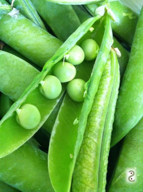 fresh peas, slightly sweet. Try them in dessert!
