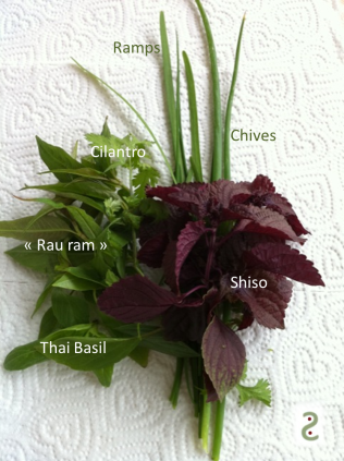 herbs pho